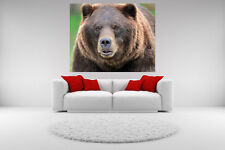 Grizzly Bear Portrait Canvas Giclee Picture Print Unframed Wall Art Home Decor