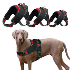 Adjustable Dog Collar Harness Reflective No Pull Nylon Vest with Soft Padded
