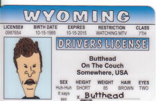 from Beavis and Butthead TV Cartoon COOL Plastic Collectors Card High Quality