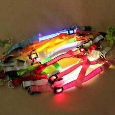 New LED Flashing Light Safety Pet Dog Harness Leash Belt Rope Collar Lead Colors