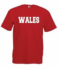 WALES sports game tee rugby football soccer gift NEW Boys Girls Kids T SHIRT TOP