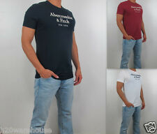 NWT Abercrombie & Fitch A&F Men Classic Fit Wanika Falls Embroidered Tee T Shirt