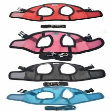 New For Summer Puppy Dog Pet Cat  Harness Vest Mesh With Leash Cool Jacket