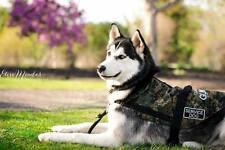 DOG VEST (Basic) Size EXTRA LARGE (XL); New Low Prices! Made by Disbled Veterans
