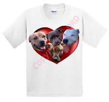 Kids T shirt Childrens Tee Shirt, Staffy Dogs in a Heart, Gift UK Ages 3 -13