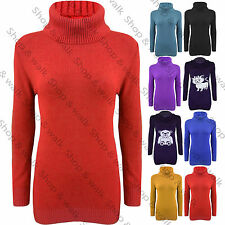 Ladies Womens Turtle Roll Polo Neck Long Knit Jumper Sweater Top Bodycon Dress