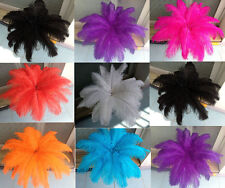 Wholesale 200pcs ostrich feathers decor wedding&Home,8-10inches choose color