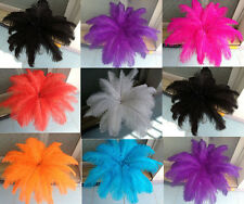 Wholesale 500pcs ostrich feathers decor wedding&Home,6-8inches choose color