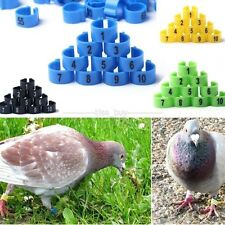 100Pcs x 9.5mm Poultry Leg Bands Bird Pigeon Parrot Chicks Rings 1-100 Numbered