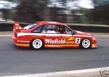 Mark Skaife 6x4 or 8x12 photos V8 Supercars HOLDEN BATHURST