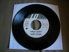 Haldree P. Just-Buddy Humming A Memory Little Darlin' LD 0017 Promo VG+ 1966 7""