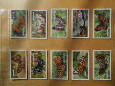 1938 Gallaher BUTTERFLIES & MOTHS butterfly  set 48 cards Tobacco Cigarette