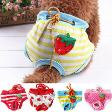 Female Adult Pet Dog Sanitary Pants Diaper Physiological Nappy Underwear Dreamed
