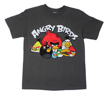 ANGRY BIRDS GRUMBLES Youth Kids Heather Grey T-Shirt - Licensed