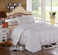 300 TC Solid White Goose Down Comforter Oversize All Season Medium Warmth 600 FP