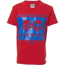 BNWT Boys t-shirt by Haywire