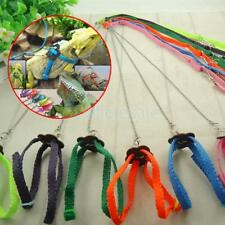 Anti-bite Harness Leash Hauling Rope Adjustable Pet Reptile for Outgoing