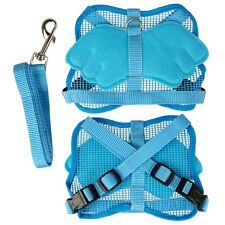 Blue Dogs Cats Puppy Pets Lovely Angel Wing Safety Adjustable Harness Leash (US)