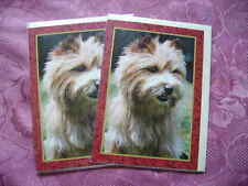 4. x NORWICH TERRIER - ANY OCCASION  GREETINGS DOG CARD-BLANK