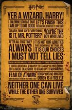 HARRY POTTER - QUOTES POSTER (61x91cm)  PICTURE PRINT NEW ART