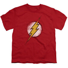 The Flash Logo Vintage Style DC Comics Superhero Big Boys T-Shirt Tee