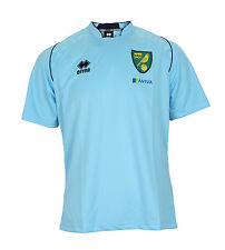 OFFICIAL NORWICH CITY FOOTBALL CLUB PLAYER WORN 2013-14 TRAINING T-SHIRT IN BLUE