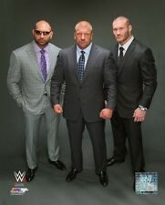 Evolution 2014 WWE Action Photo (Select Size)