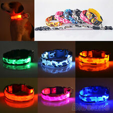 Fancy Pets Dog Colorful LED Lights Leopard Waterproof Flash Night Safety Collar