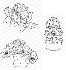 CACTUS-Impression Obsession Cling Mount Rubber Stamps-Stamping Craft-Cardmaking