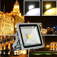 10W/20W/30W/40W/50W LED Day/Warm White RGB PIR Flood Light Lamp Garden Outdoor