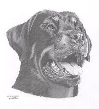 ROTTWIELER dog LE art drawing prints 2 sizes A4/A3 & cards Available