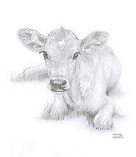 CALF Cow Limited Edition art drawing prints  2 sizes A4/A3 & Card Available