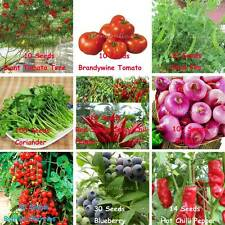 Vegetable & Fruits Seeds Garden NON GMO / Hybrid Organic Fresh Sweet Plant Food
