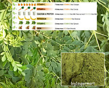 100% Natural Moringa Oleifera Leaf Powder Drum Stick Leave Puder Miracle Tree
