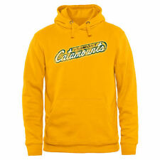 Vermont Catamounts Classic Wordmark Pullover Hoodie - Gold - College