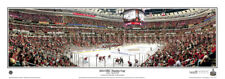 NHL Chicago Blackhawks 2010 Stanley Cup Final Game 1 Panoramic Poster 4020