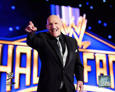 Bruno Sammartino WWE Licensed Fine Art Prints (Select Photo & Size)