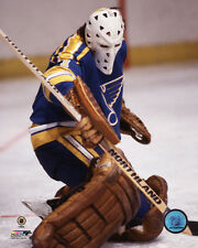 Mike Liut St. Louis Blues NHL Action Photo MA033 (Select Size)