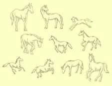 Horses Redwork & Trapunto Machine Embroidery Designs CD-40Anemone Embroidery Des