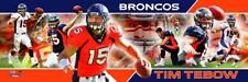 Tim Tebow Quarterback Denver Broncos Photoramic #1015