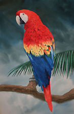 """A Gift for Ann"" Tom Freeman Limited Edition Print - Scarlet Macaw Parrot"