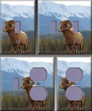 Bighorn Sheep Wall Decor Light Switch Plate Cover