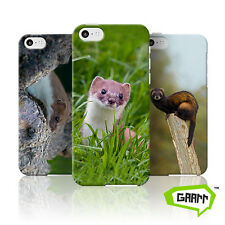 Stoats, Weasels and Polecats iPhone 5c Case