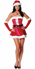 Santas Sweetie Miss Claus Sexy Christmas Holiday Dress Festive Adult Costume