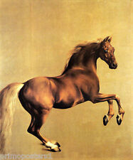 HORSE PORTRAIT WHISTLEJACKET PAINTING BY GEORGE STUBBS REPRO