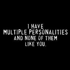 I Have Multiple Personalities.. Tshirt   Sizes/Colors