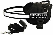 DT WORKS Working Harness & Padded Puppy Bundle w/ Patch THERAPY DOG IN TRAINING