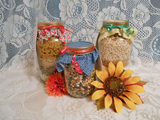 NEW Homemade Bar Cookie Mix In A Quart Jar 12 Varieties You Choose Flavor Gift