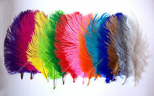 Pack of 2 OSTRICH FEATHERS - Approx 7 Inches - Large Choice of Shades