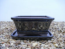 Bonsai Pot & Matching Tray 16cm / 6 Inch - Different Colours & Styles Pls Click